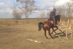 Antrenament (18)