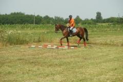 Antrenament (6)