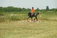 Antrenament (8)